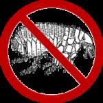 Natural Flea Treatment for Cats – Flea Predators | Flea Repellant Plants