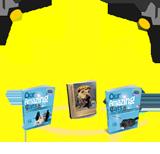 3 'AMAZING'  books!