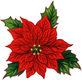 Poinsettias aren't as dangerous as once thought.  But keep them up and away from your pets to avoid even minor upsets.